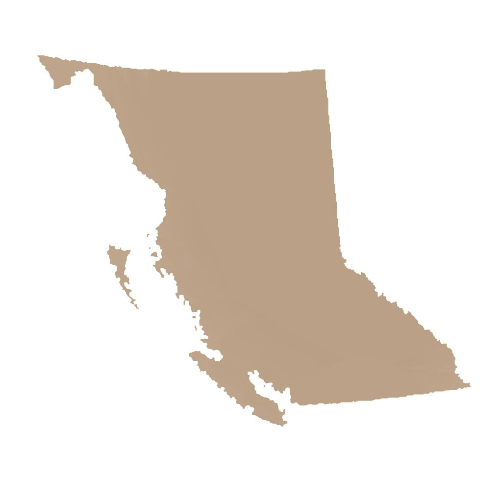 SEO-British-Columbia